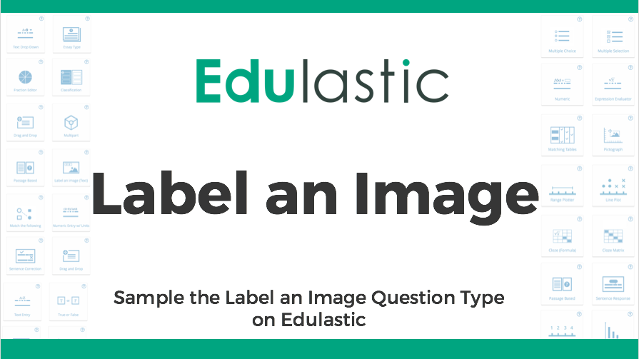 Label an Image